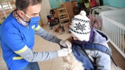 Vacunación canina y felina en Zona Norte